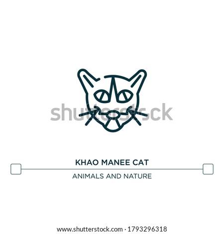 khao manee cat vector line icon