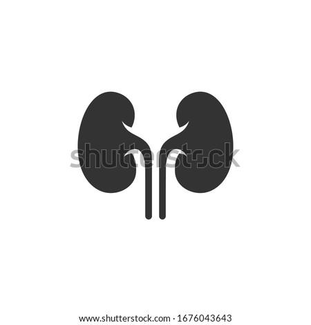 Kidney icon vector. Urology logo design template. Сток-фото ©