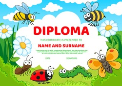 Kids education diploma with cartoon insects cute bees, butterfly and ladybug, caterpillar and ant on green grass, chamomile flowers under cloudy sky. Kids school or kindergarten diploma certificate