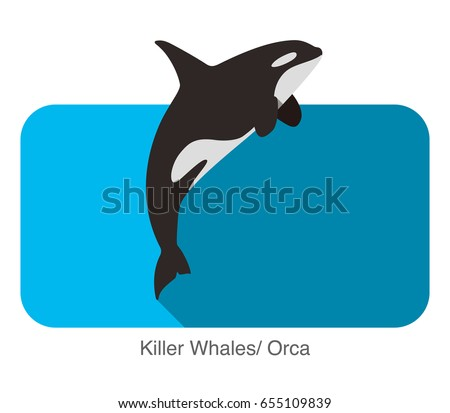 Killer Whale jumping in the sea flat icon design, vector illustration