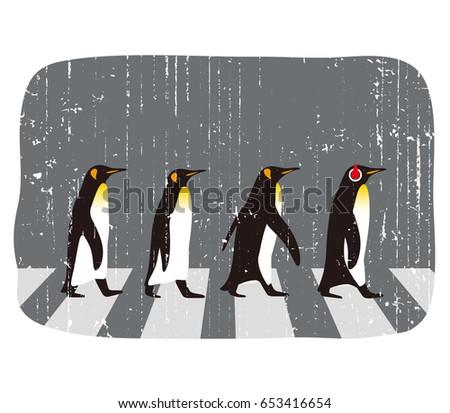 king penguin walking  penguin