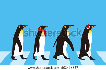 king penguin walking  penguin