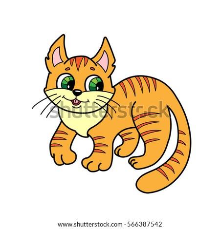 kitten  cute striped orange cat