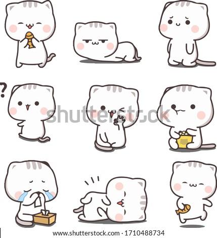 kitten different emotions