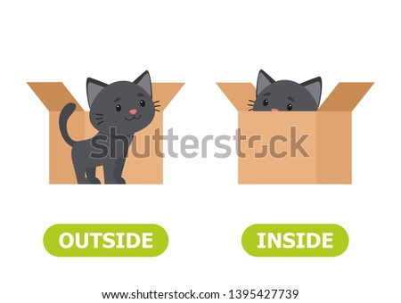 Kitten inside the box and outside. Illustration of opposites inside and outside.
