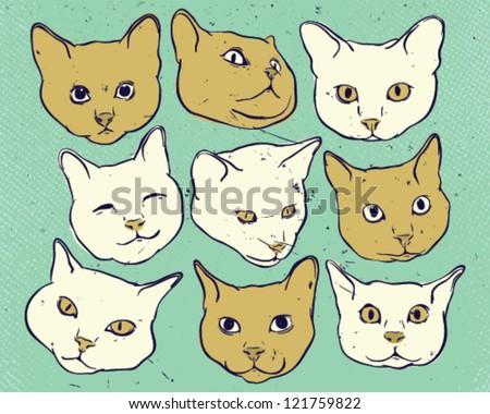 Kitties heads