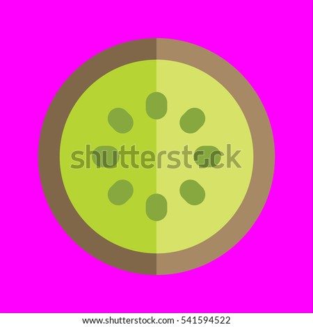 kiwi icon flat disign