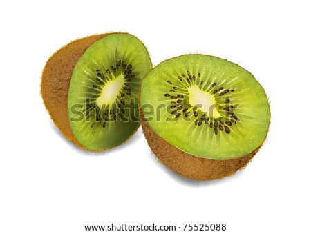 kiwi on white background