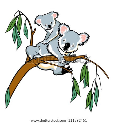 koala bear with joey climbing