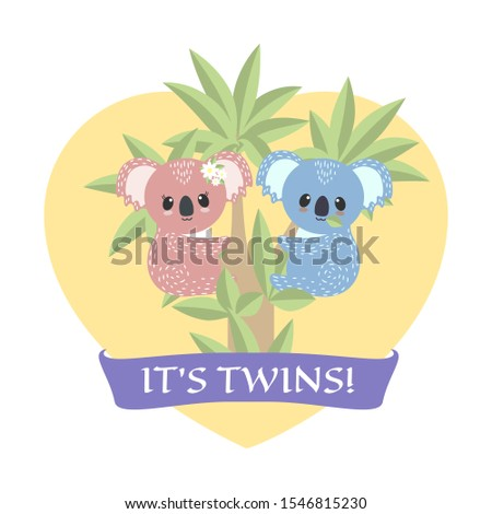 koala twins boy and girl on a