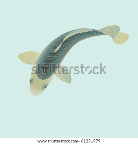 stock vector koi carp fish