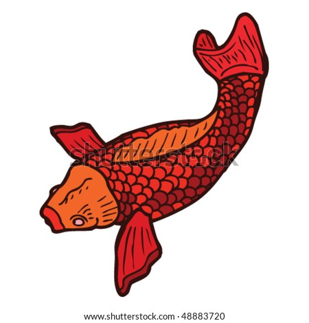 stock vector : koi carp tattoo