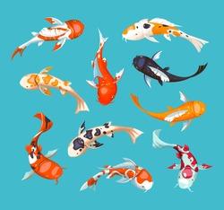 Koi carps. Koi japanese fish vector illustration. Chinese goldfish. Koi symbol of wealth. Aquarium illustration.  Fish seamless pattern.