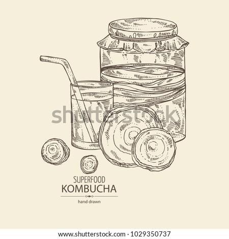 kombucha  mushroom  jar with