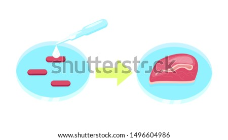 Lab grown meat vector concept. Petri dish with cell culture that became beef steak, in vitro meat infographic.Illustration of Future food technologies