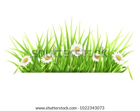 label with green grass and