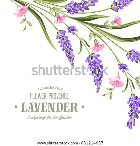 label with lavender bunch of