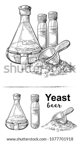 laboratory flask with liquid, brewer yeast, scoop with dry yeast vector illustration
