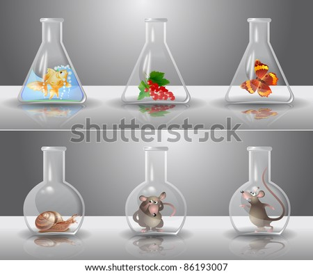 Laboratory flasks with different living organisms inside