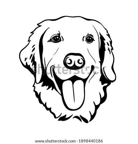 Labrador Retriever. Silhouette. Line art. Template. Close-up. Clip art. Hand Painting. Ink. Black and white. Zdjęcia stock ©