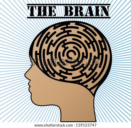 labyrinth brain
