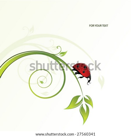 ladybird in the grass