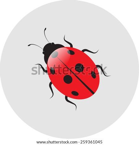 ladybird label icon