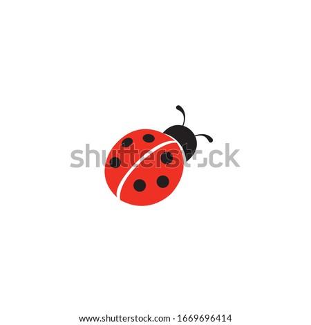 Ladybug icon on a white background Сток-фото ©