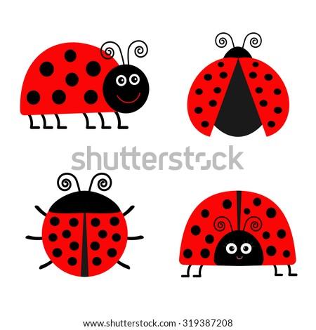 ladybug ladybird icon set baby