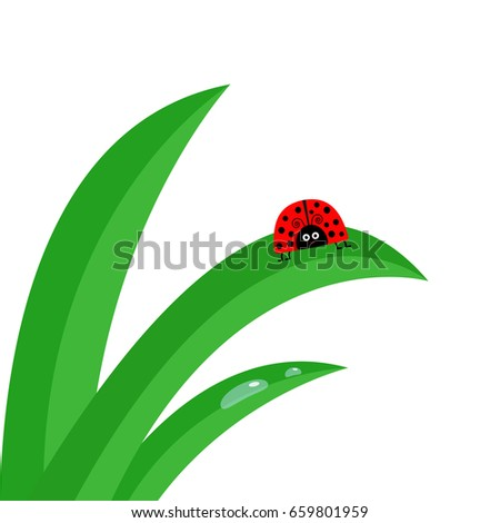 Free vector insect silhouettes 123freevectors - Ladybug watering can ...