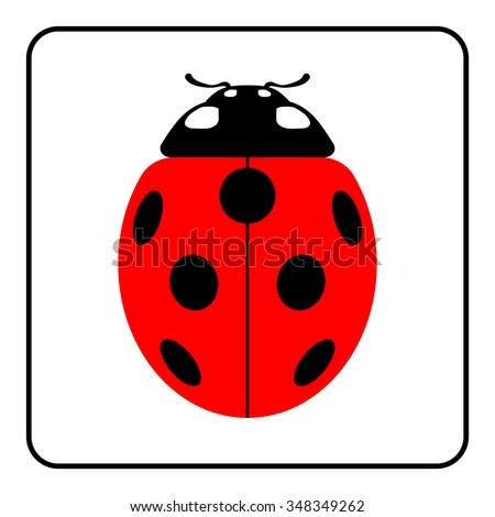 ladybug sign in the frame