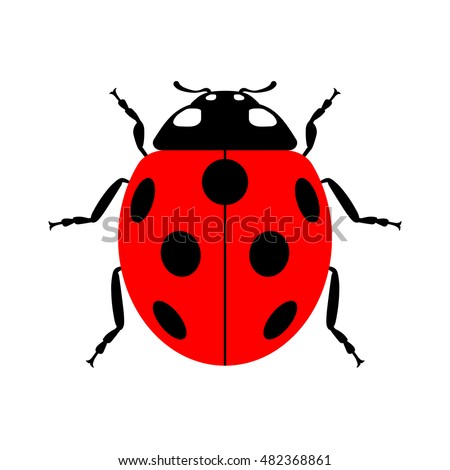 ladybug small icon red lady