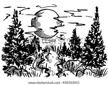 landscape forest  landscape