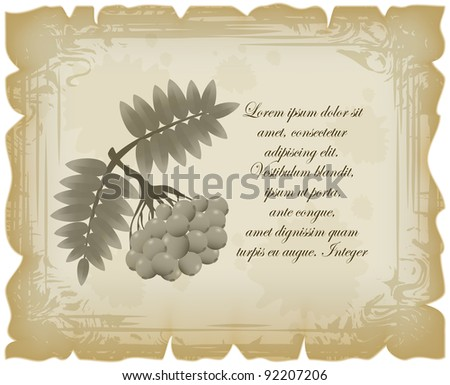 Landscape list in vintage style with branch of rowan berries
