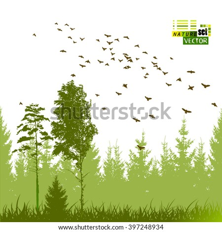 landscape nature trees with