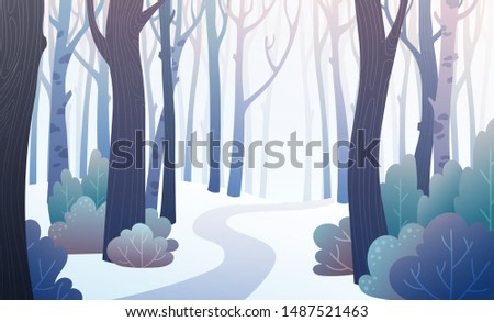 landscape of a forest path in