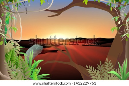 landscape of jungle at the