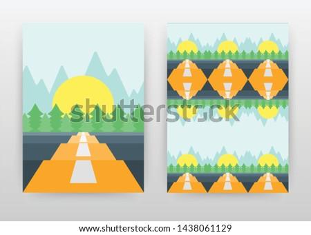 landscape of road  sun  pine