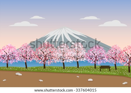 landscape of sakura cherry