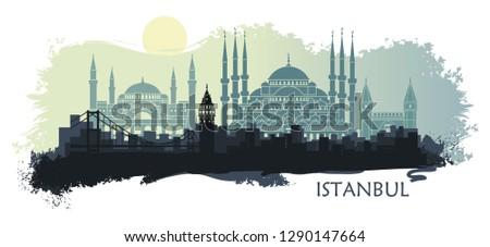 landscape of the turkish city