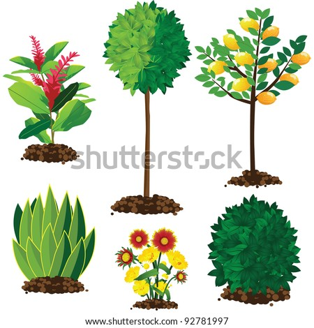 Landscape plants EPS 8 vector, no open shapes or paths, grouped for easy editing.