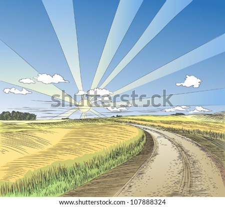landscape, road to the field, vector illustration, color and lines in different layers