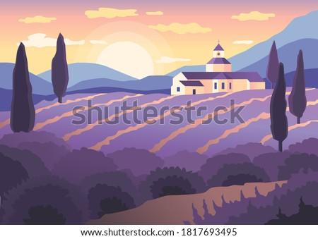 landscape sunset in provence