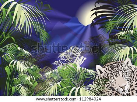 landscape, tropical plants tiger (wild animal)