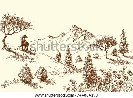 landscape  wilderness and horse