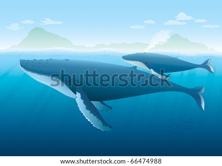 "Landscape with ocean and island with Humpback Whale mother and young whale swimming on surface.  ""Full compatible. Created with gradients. Named in layers."""