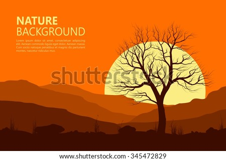landscape with old tree at