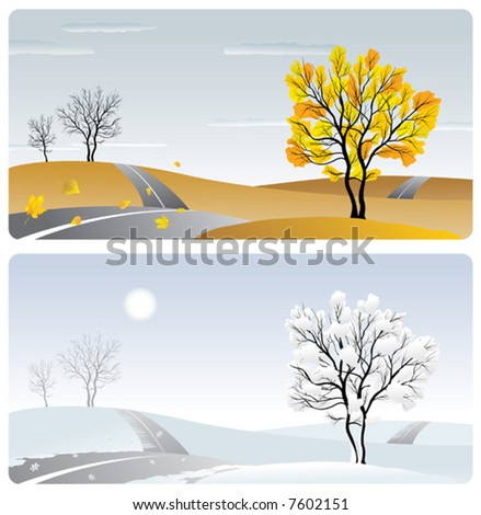 landscape with tree & road in winter & autumn season