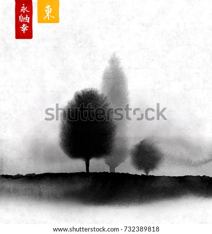 landscape with trees in fog
