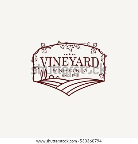 landscape with vineyard fields